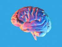 Everything you must know about chemical imbalances in the brain